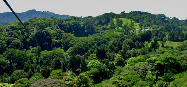 Wereldplek Costa Rica reistips Canopy Monteverde